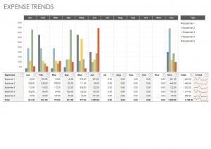 Expense Trends Budget Template