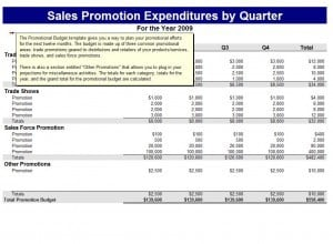 Promotional Budget Template